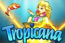 Tropicana Slot Online from Spigo